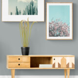 Simple_living_room_interior
